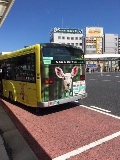 路線バスで奈良公園の鹿を交通事故から守る活動!