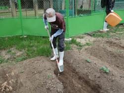 環境農園「しかちゃんファーム」4月24日