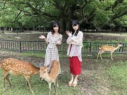 鹿寄せの取材(AKB48Group新聞)